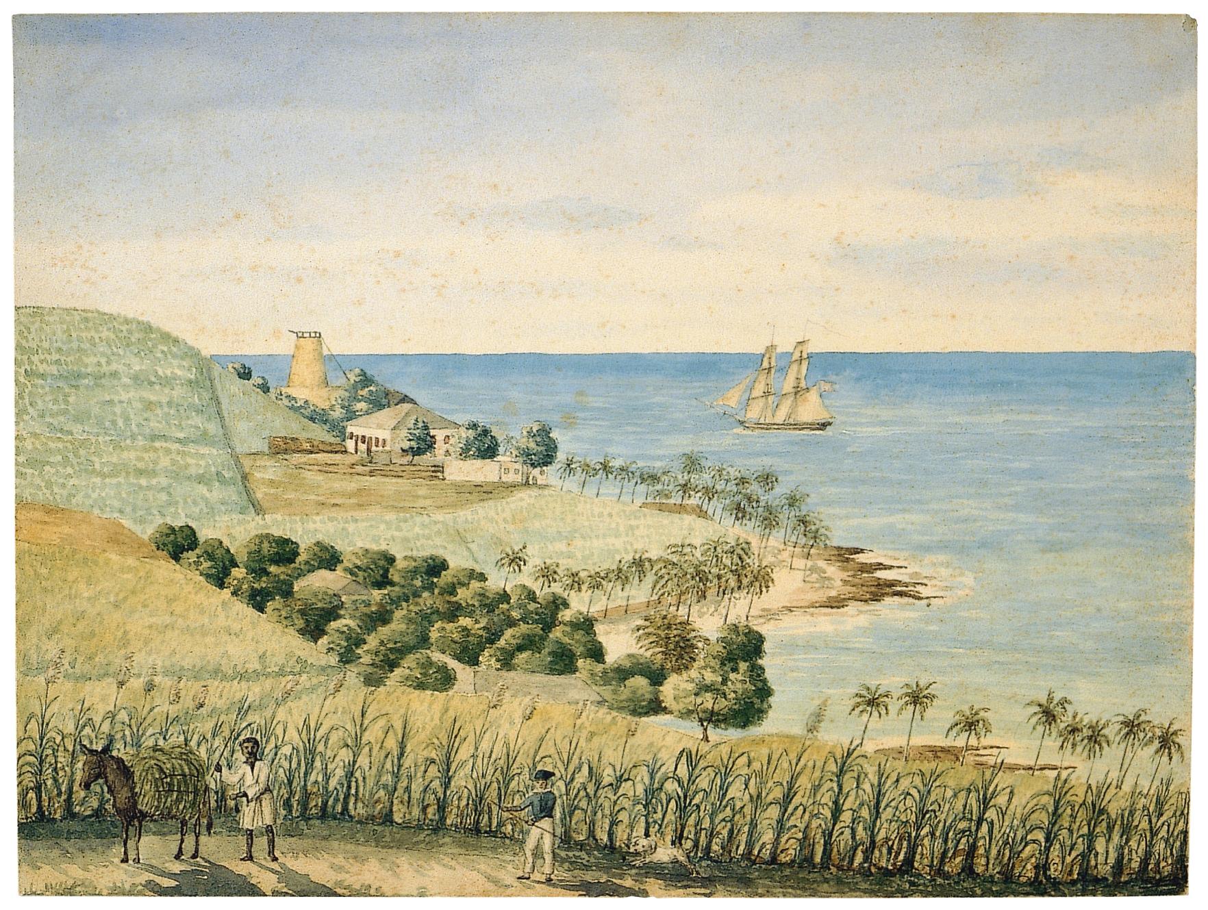 Butlersbay på St. Croix F. Scholten november 1833. Nationalmuseet.